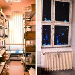 h-medical-clinic-inainte-si-dupa-25-150x150 (1)
